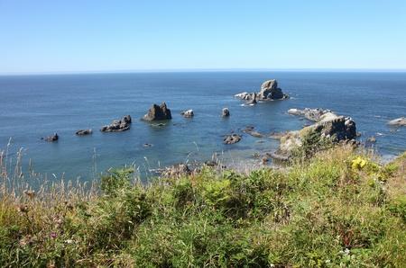 Oregon coast pacific northwest cliffs & beaches. Stock Photo - 10347338