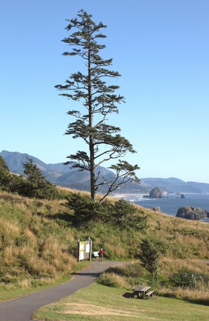Ecola state park and the Oregon coast. Stock Photo - 10347340