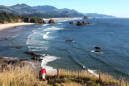 northwest: Oregon coast pacific northwest cliffs beaches.