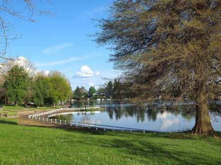 atmosphere: Spring atmosphere in a park. Stock Photo