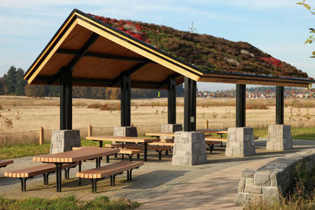 overhang: Recreational, picnic rest area in a park.