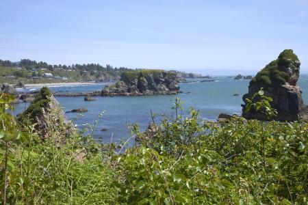 Oregon coastline rocky shores, vegetation and pacific ocean view Stock Photo - 14166492