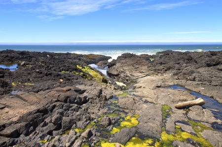 Rocky lava shoreline at Cape Perpetua Oregon coast  photo