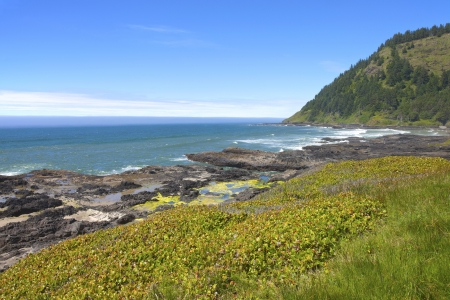 Cape Perpetua national park and recreation, Oregon coast  Stock Photo - 14166517