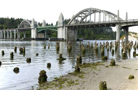 Bridge crossings and river with tree stumps, Florence OR  photo