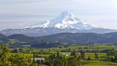 Mt  Hood and Hood River valley panorama in Spring Oregon  photo