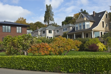 Highland drive neighborhood plants and homes Seattle WA  Stock Photo