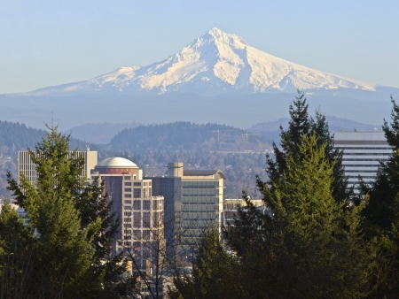 Mt  Hood and downtown Portland Oregon buildings  photo