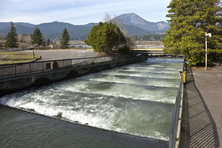 Fish ladders and flowing fresh water Bonneville Oregon.