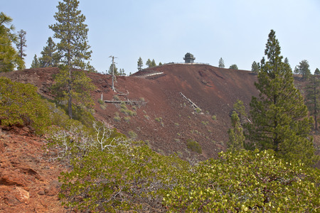 Lava Butte forest trees and crater near Bend Oregon.