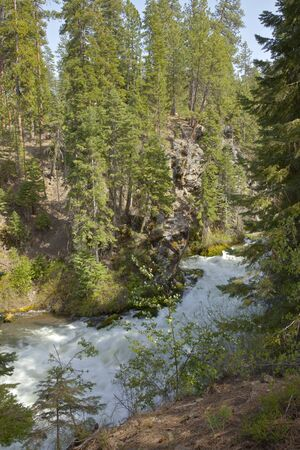 canyon walls: Rushing riverflow in central Oregon forest.