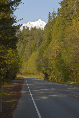 oregon  snow: Travelling in central Oregon forests looking at a snow capped mountain. Stock Photo