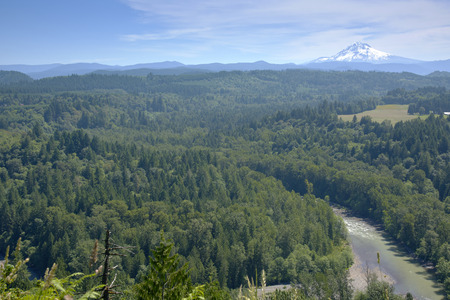 mt: Jonsrud Viewpoint forest and Mt. Hood in Sandy Oregon.