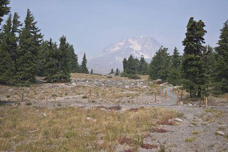 under fire: monte Campana de Oregon y árboles bajo un intenso fuego humo.