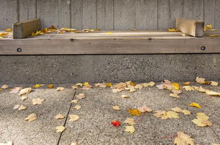 wall light: Seasonal changes in Seattle WA.