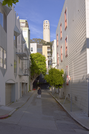 coit: San Francisco neighborhood alley near Coit tower California.