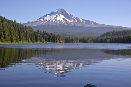 mt  hood: Trillium lake and Mt. Hood in morning light Oregon state.