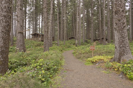 Coastline cabins for rent at the Oregon coast.