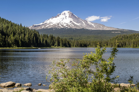 Mt. Hood and Trillium lake in the Summer Oregon state. Stock Photo