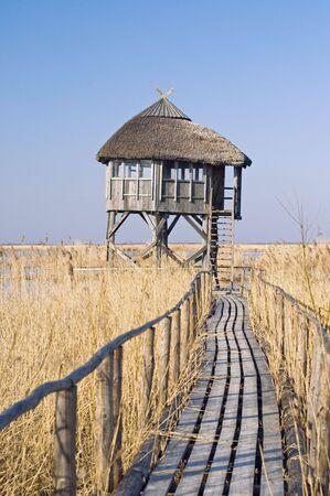 bird sanctuary: birds- observation turret in bird sanctuary. Latvia, Pape-lake. Stock Photo