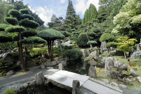 summer day in Japanese garden in Europe Stock Photo