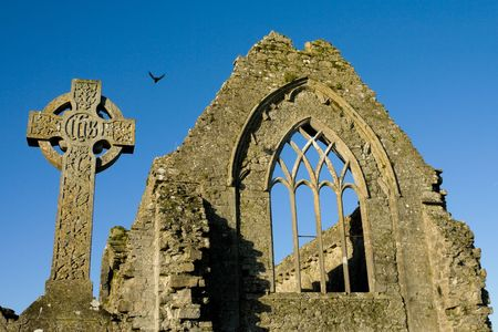 Athenry Dominican Friary,remains details,and stone cross Stock Photo - 6022304