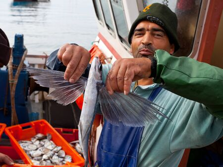 LAGOS - JUNE 9: Unidentified fisherman shows an Exocoetidae or flying fish from the days catch on June 9, 2011 in Lagos, Portugal.