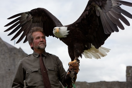 ATHENRY, IRELAND - AUGUST 21: Lothar Muschketat with Bald Headed Eagle take part at annual National Walled Towns Day  on August 21, 2011 in Athenry, Ireland.