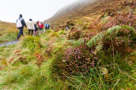 connemara: Hiking on Diamond Hill  in Connemara, west of Ireland