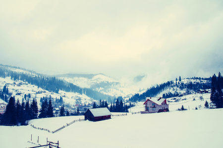 Mountain house covered with fresh snow in the Carpathian mountains 版權商用圖片