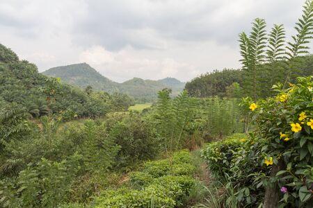 ceylon: Nature of Ceylon