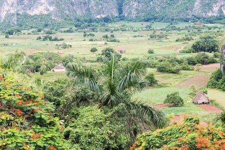 キューバのシエラ ・ デル ・ ロザリオの景色。 写真素材