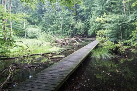 A small bridge over a lake. Stok Fotoğraf