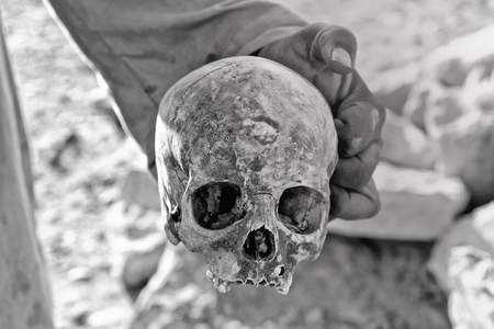 archeological site: Skull from archeological site in Luxor Stock Photo