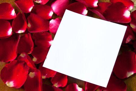 notepaper photo