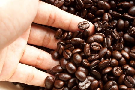 Coffee Beans and a hand