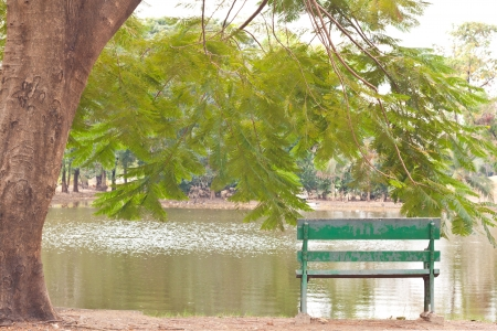Empty wooden park bench overlooking a lake or pond in the  Gardens,