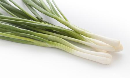 green onion on white Stock Photo