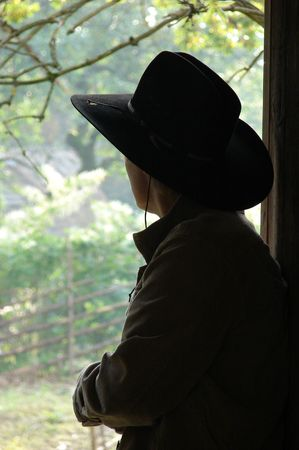 Silhouette of a cowboy  Stock Photo