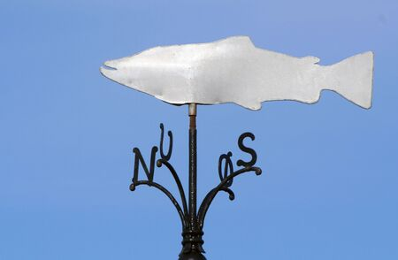 weathervane: funny weathervane with a fish