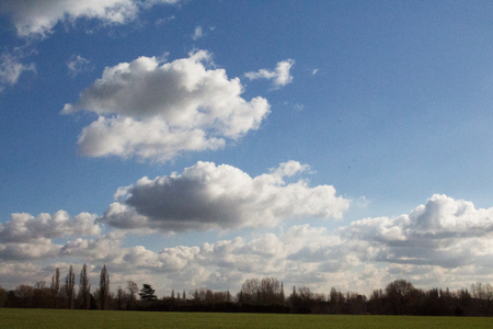 screen savers: A Sunny Blue Sky With Clouds, Trees, Green Field, Grass