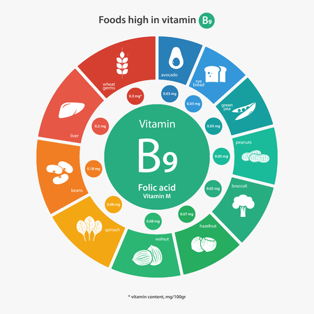 Foods high in vitamin B9. Vitamin content of foods. Healthy lifestyle and diet illustration infographics with food icons.