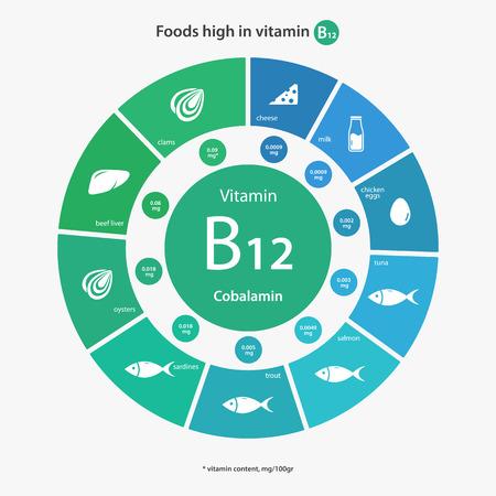 Voedingsmiddelen met een hoog vitamine B12. Vitaminegehalte van voedingsmiddelen. Gezonde levensstijl en voeding illustratie infographics met voedsel pictogrammen.