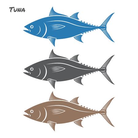 흰색 배경에 참치 물고기 그림