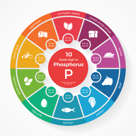 10 foods high in Phosphorus. Nutrition infographics. Healthy lifestyle and diet illustration with food icons.