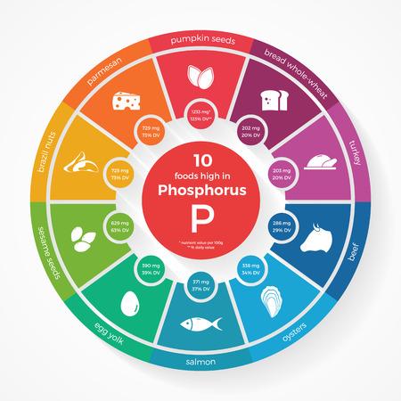 10 voedingsmiddelen met een hoog fosfor. Nutrition infographics. Gezonde levensstijl en voeding illustratie met voedsel pictogrammen. Vector Illustratie