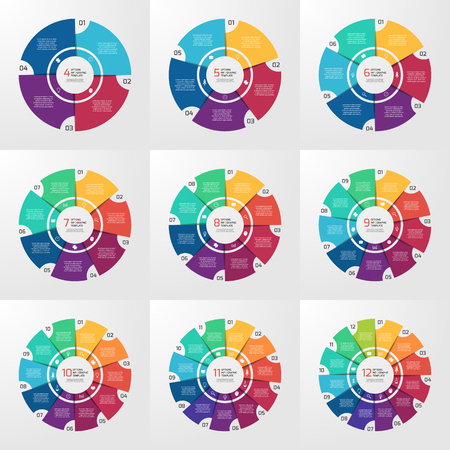 Vector circle infographic template for graphs, charts, diagrams. Pie chart concept with options, parts, steps, processes.