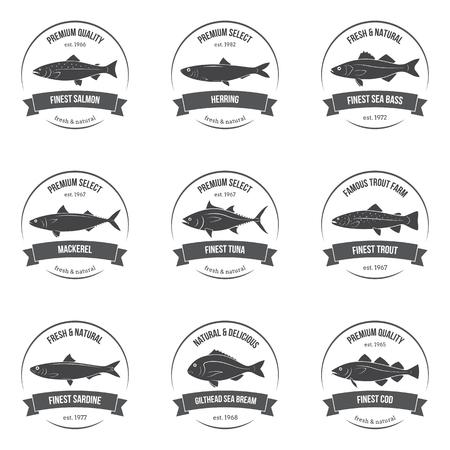 silhouettes poissons, des étiquettes, des emblèmes. Salmon, le hareng, le loup de mer, le maquereau, le thon, la truite, sardine, dorade, la morue. Ensemble de modèles pour les magasins, les marchés, les emballages alimentaires. Fruits de mer illustration. Vecteurs