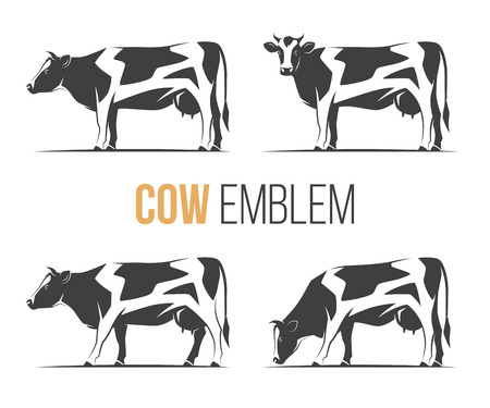 Vector set of a stylish spotted holstein cows.