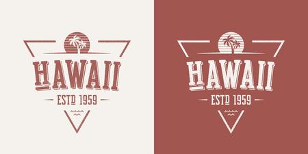 하와이 주 질감 빈티지 벡터 티셔츠와 의류 디자인,